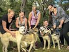 Bianca Campbell, Chloe Sawyer and their friends with dogs Kooper, Keira, Kaos, Hunter and Bella.