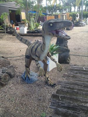 The raptor dinosaur statue which sat on stage at the Big Pineapple Music Festival has been stolen. Photo Contributed