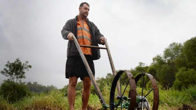 Organics farmer Richard Benson working in a field. Photo Allan Reinikka / The Morning Bulletin