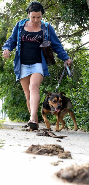 MUCH MANURE: Jodie Bliss with her dog Jala walking past horse poo on a footpath at Stafford Street, Silkstone.