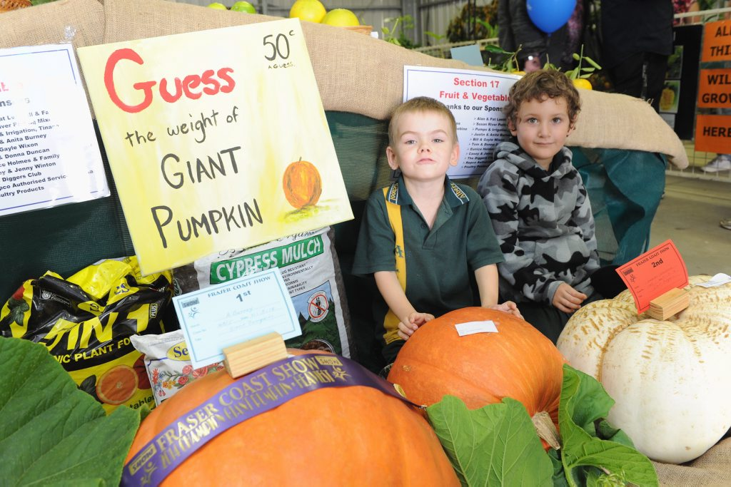 Fraser Coast Show - 5 yr olds (L) Kayden Curby and Zak Holt from Albert State School in amongst the giant pumpkins grown by Anton and Amie Burney.