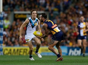Disgruntled Lion Jared Polec finally has Power to perform