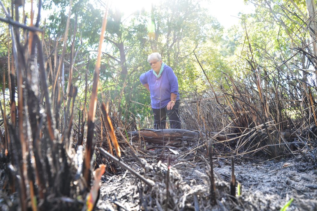 East Creek Park Defenders spokeswoman Jenny Wilson is wary of the motives behind a suspected arson attack on the frog habitat at Garnet Lehmann Park.