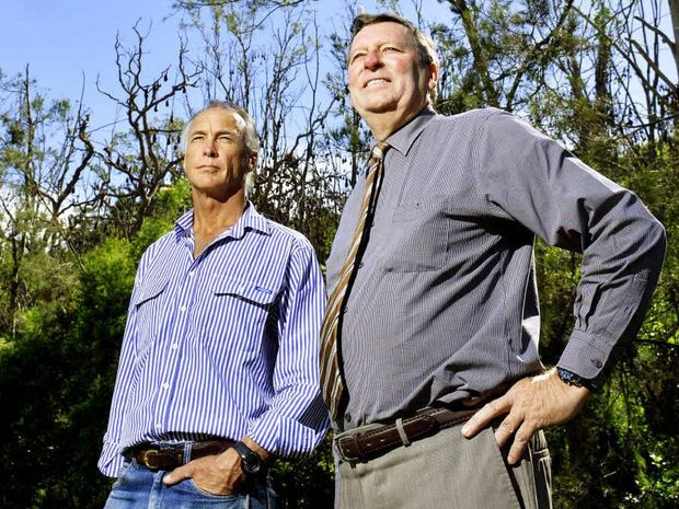 MOVE THE BATS: Scenic Rim Mayor John Brent (right) and Cr Rick Stanfield in front of a large bat colony in Bicentennial Park in Boonah. The colony will be removed from this week.