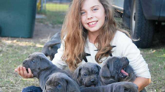 PUPPY LOVE: Tahlia Brennan has plenty of love for pooches.