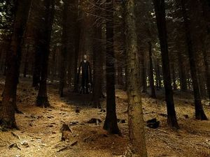 Slenderman horror: Girls, 12, 'stabbed friend 19 times'