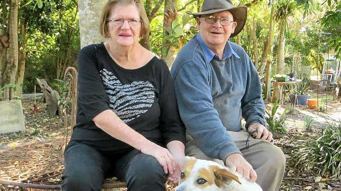 KEEN ON ROSELLAS: Don and Lil O'Donnell, Gympie Horticultural Society members, rest in their Fisher Rd garden with their dog Harley.