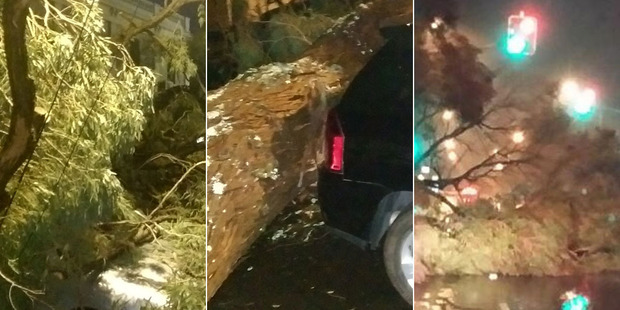 Damage photos sent from around Auckland city by New Zealand Herald readers this morning.