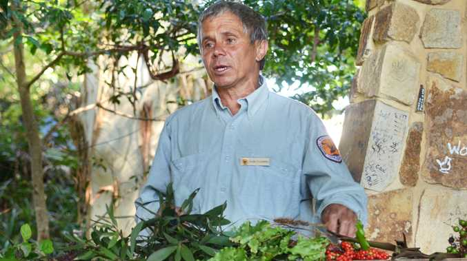 NPWS ranger Uncle Mark Flanders will share his knowledge of bush food with students taking part in the Indigenous cultural awareness activities.