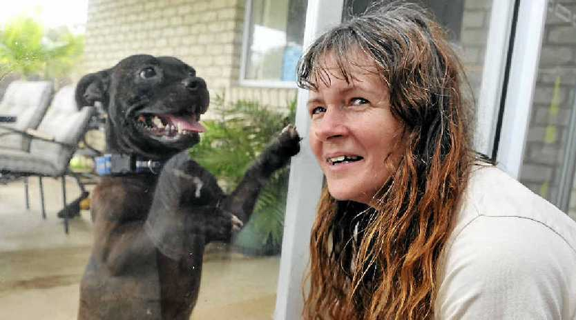 FURRY FRIENDS: Jan Bartlett is hoping locals will help her raise enough money to be a mobile animal triage unit.