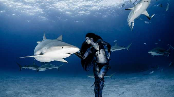 Hannah Fraser swims with sharks. Photograph: Shawn Heinrichs