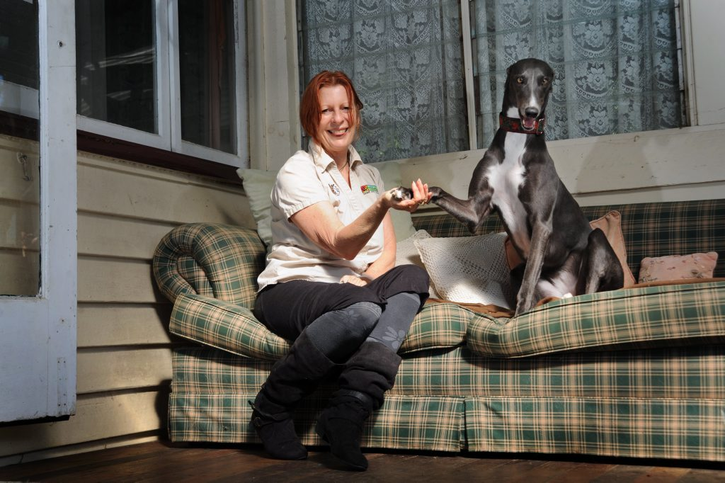 Faith Wild of Bark Busters is a behavioural expert and has started dance classes for dogs such as greyhound Lolly, 3. Photo: Iain Curry / Sunshine Coast Daily