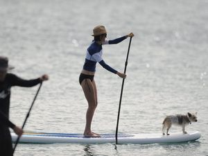 Katie and her canine take a regular paddle
