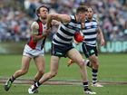 Athletic Blicavs happy to be running with the Cats