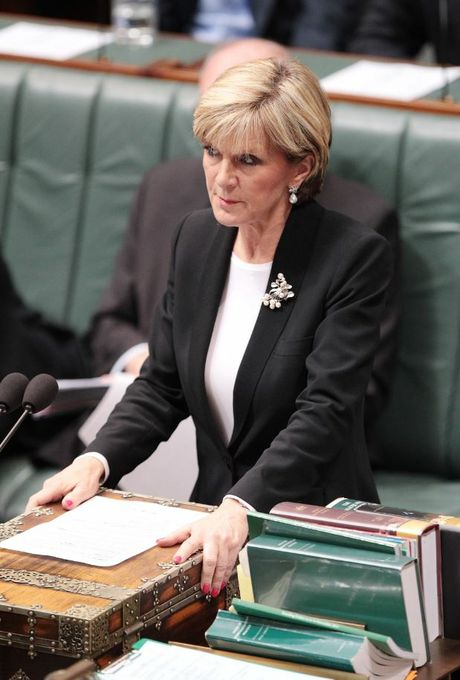 Minister for Foreign Affairs, Julie Bishop, during House of Representatives question time at Parliament House, Canberra, Thursday, June 19, 2014.