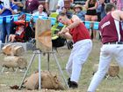 Crowds join big spectacle at Mt Larcom Show
