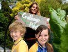 Hamish Pitman, Charli Weale and teacher Celia Mulderin at Crabbes Creek public schools garden. Photo: John Gass / Tweed Daily News
