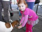 Families flock to meet farmyard friends at library