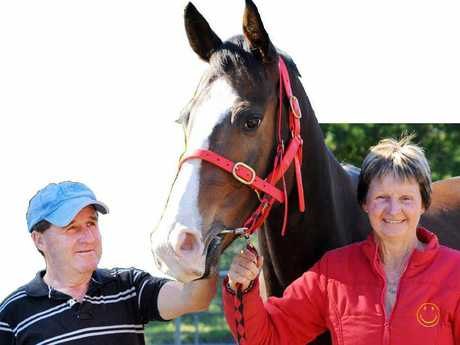 HIGH HOPES: Paddy and Kathy Cunningham with race horse Aimalac Burra. Photo: Leigh Jensen