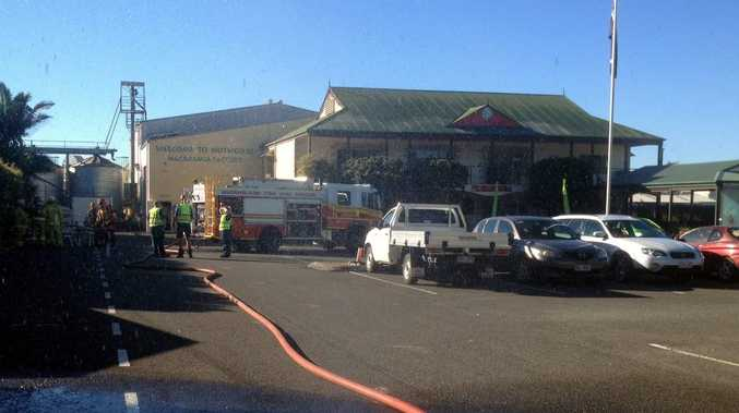 Fire crews at the scene of the fire at Nutworks in Yandina