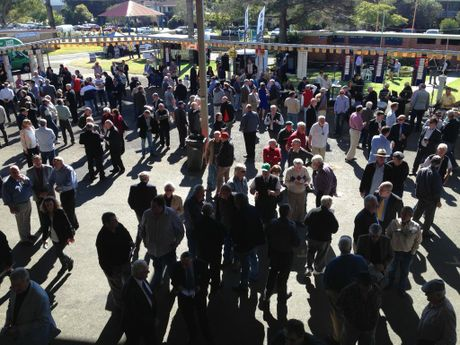 The betting ring is full swing as the first race nears. Photo Debrah Novak / Daily Examiner