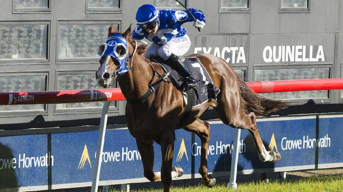 WRITING ON THE WALL: Tegan Harrison takes Royal Scribe to the line to win the Grafton Guineas. PHOTO: ADAM HOURIGAN