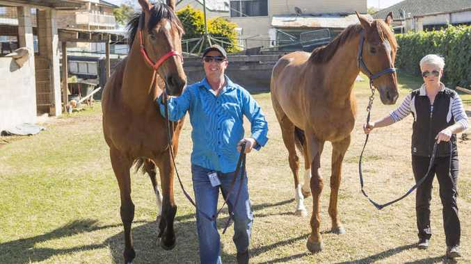 CUP HOPES: Foremen Des Fishcer and Laura Stritch with Gai Water-house's horses racing in the Grafton Cup, Queenstown and Travolta.