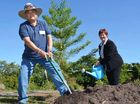 GROWING FRIENDSHIP: Hiromi Sakita and Mackay Mayor Deirdre Comerford plant a hoop pine at Mackay Regional Botanic Gardens.