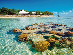 Reef off Heron Island - courtesy of GAPDL