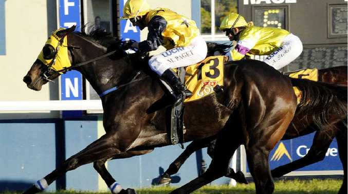 CHANGE OF LUCK: Primed To Win scores by a half length from Winning Review in the 2014 Maclean Cup at Clarence River Jockey Club, ridden by Matthew Paget. PHOTO: DEBRAH NOVAK
