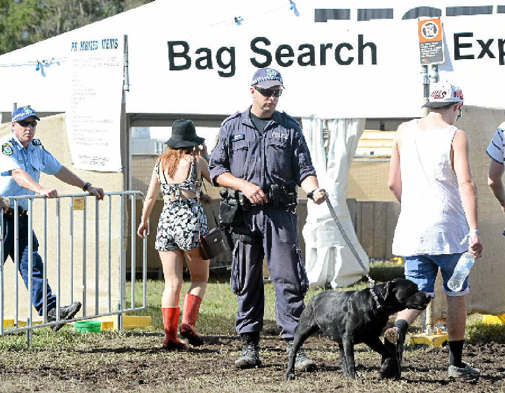 SHARP NOSES: Police sniffer dogs at the entrance to the 2013 Splendour In The Grass.