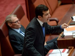 Dastyari claims he acted in the 'national interest'