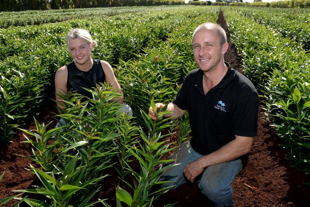 WORKERS ACCOMMODATION: Liisa Kaunissaar will manage the new backpackers hostel which Adam Robertson of Robertson Flower Farm Bundaberg will open on a block of land behind Bargara Berries. Photo: Mike Knott / NewsMail