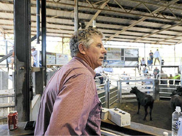 SALE TIME: Ray Donovan Stock and Station Agents director Ray Donovan keeps an eye on proceedings. Photo: JoJo Newby
