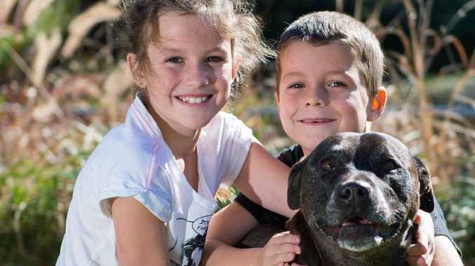 PUPPY LOVE: Young philanthropist Imogen Rooney with her brother Talan and pet dog Tayla.