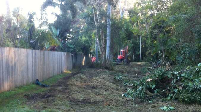 Division 5 Councillor Jenny McKay said vegetation clearing had been carried out to create a buffer zone between houses in Dunning Street and the nearby flying fox roost.