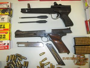 Firearm imports sentencing only to guide judges