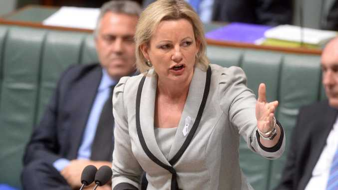 Federal Health Minister, Sussan Ley has announced a further 12 months funding for mental health services.