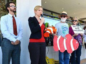 The reef senate inquiry in Mackay