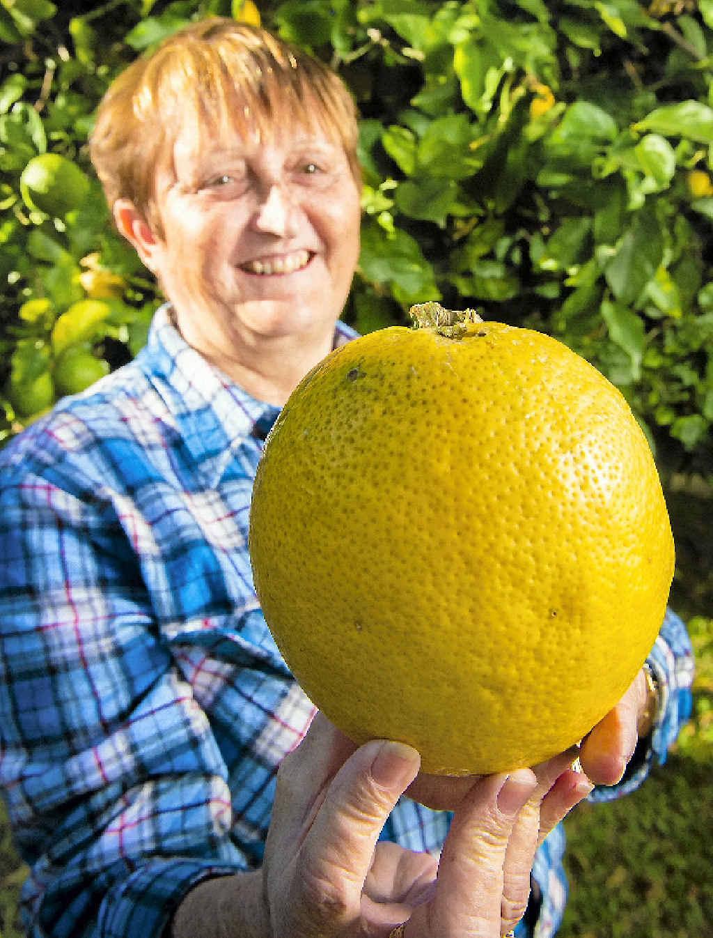 Nancy Janson with her huge lemon.