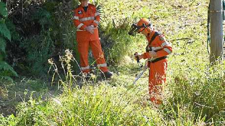 LONG HAUL: Vegetation is cleared at a search site off Main Creek Road, Tanawha.