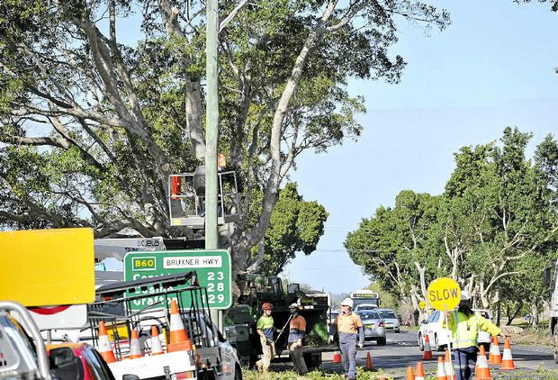 GOING, GONE: Workers cut branches off the fig trees on the Bruxner Hwy, to make way for a roundabout at the site of the upcoming Masters site.