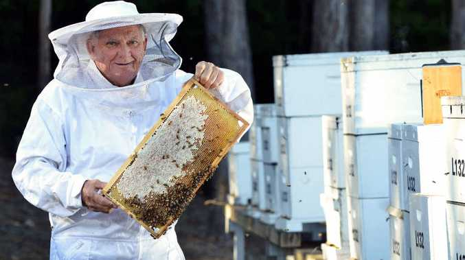 HIVE OF ACTIVITY: Tony L'Estrange, 78, is a stalwart of the Sunshine Coast Beekeeping Group and happily shares his knowledge.