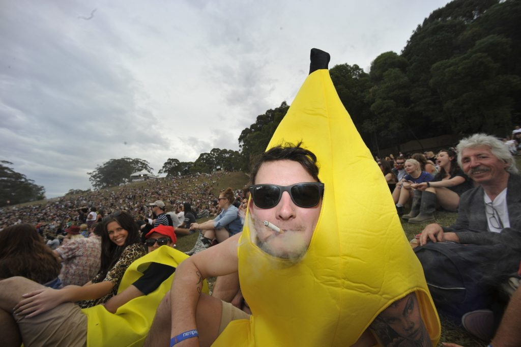 Image for sale: Splendour in the Grass 2014 was a great success with festival goers getting into the spirit of the three day long festival held at Byron Bay. Photo Marc Stapelberg / The Northern Star