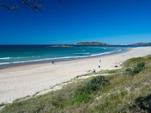Coffs Harbour beach closed after large shark spotted
