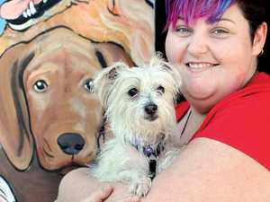 Less pets euthanised but 590 still put to death