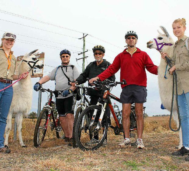 PASSIONATE: Leisa Cornford (Ottaba llamas), Paul Heymans, Graham Hayton, Ken Wilson and Rebekah Mircic (Ottaba llamas) hit the Brisbane Valley Rail Trail on the weekend.