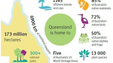 A spotlight on Queensland's environment