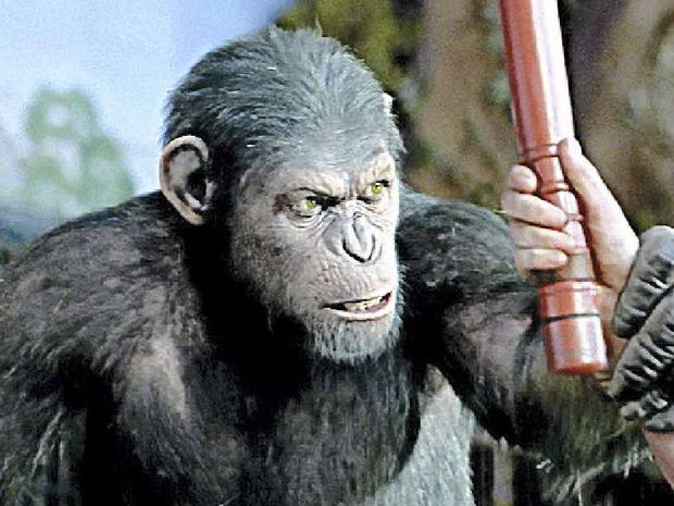 RUNNING WILD: The Rise of the Planet of the Apes is screening at the Sovereign Cinema.