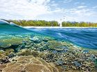 TOO GOOD TO RISK: One of the Great Barrier Reef's many treasures, Lady Elliot Island.